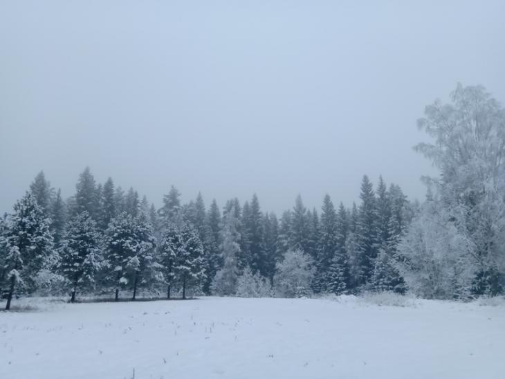 A fresh new year with fresh new snow!
