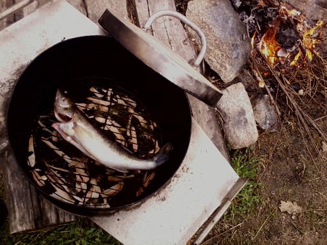 About to smoke fish