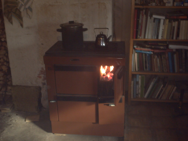 A wood burning stove. Seems like I'm going to surive the winter =)