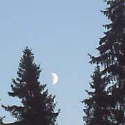hey moon!