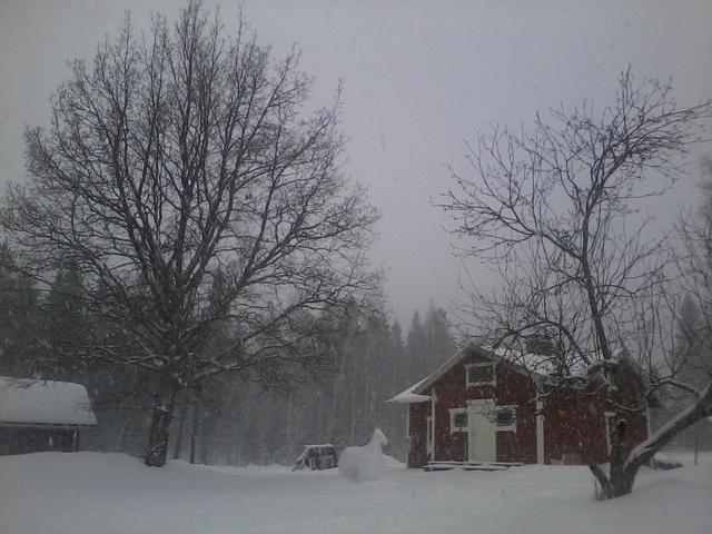 A few days ago it was snowing